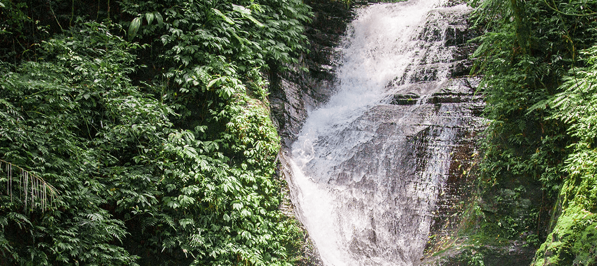 Waterfall Sustainability Showing